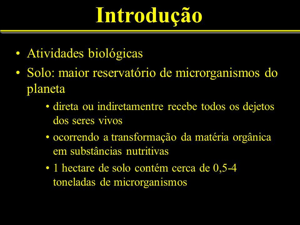 Introdução Atividades biológicas Solo: maior reservatório de microrganismos do planeta direta ou indiretamentre recebe todos os dejetos dos seres vivo
