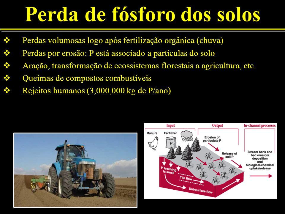 Perda de fósforo dos solos Perdas volumosas logo após fertilização orgânica (chuva) Perdas por erosão: P está associado a partículas do solo Aração, transformação de ecossistemas florestais a agricultura, etc.