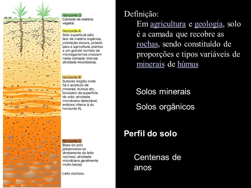 Perfil do solo Definição: Em agricultura e geologia, solo é a camada que recobre as rochas, sendo constituído de proporções e tipos variáveis de minerais de húmusagriculturageologia rochas mineraishúmus Solos minerais Solos orgânicos Centenas de anos