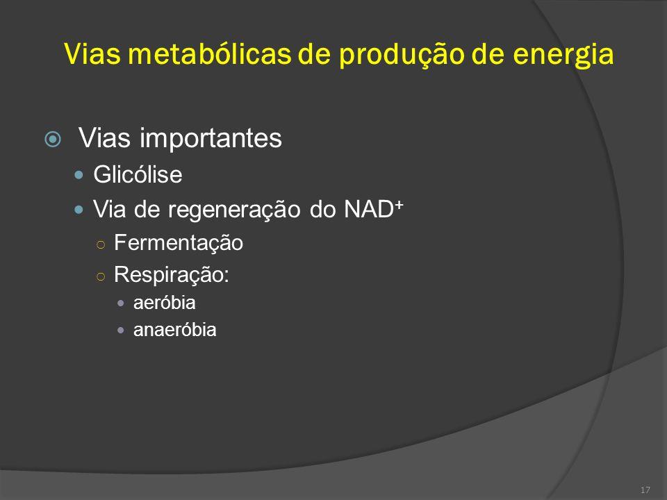 Vias metabólicas de produção de energia Vias importantes Glicólise Via de regeneração do NAD + Fermentação Respiração: aeróbia anaeróbia 17