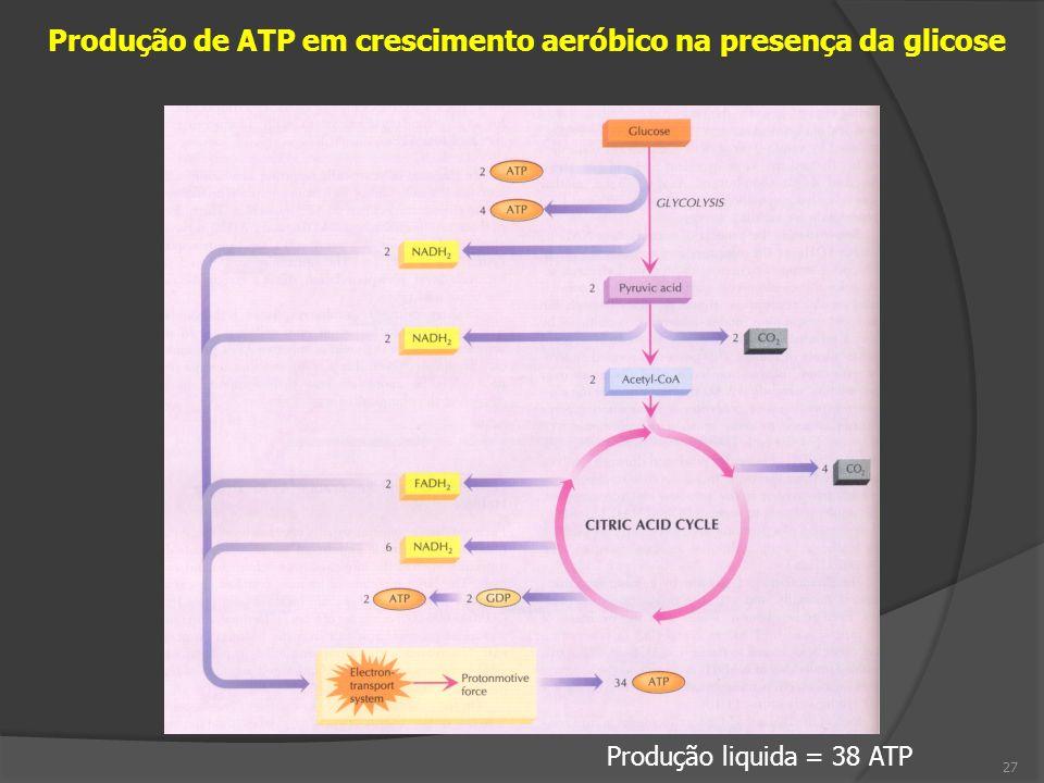Produção de ATP em crescimento aeróbico na presença da glicose 27 Produção liquida = 38 ATP