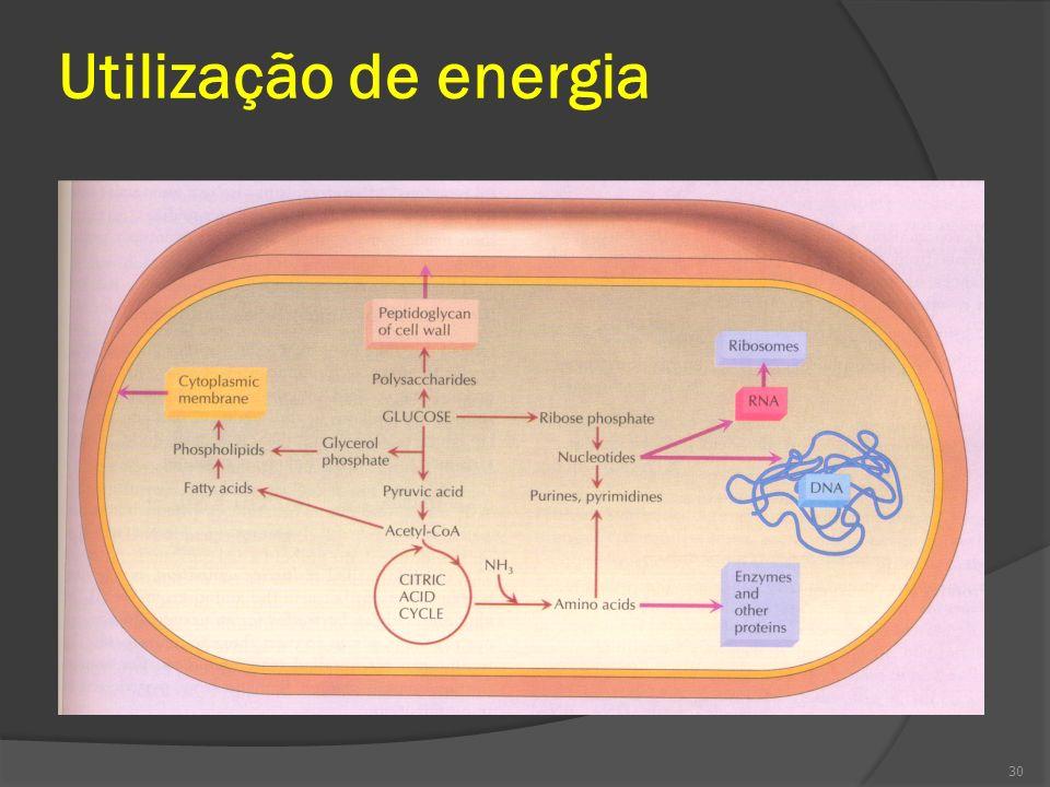 Utilização de energia 30