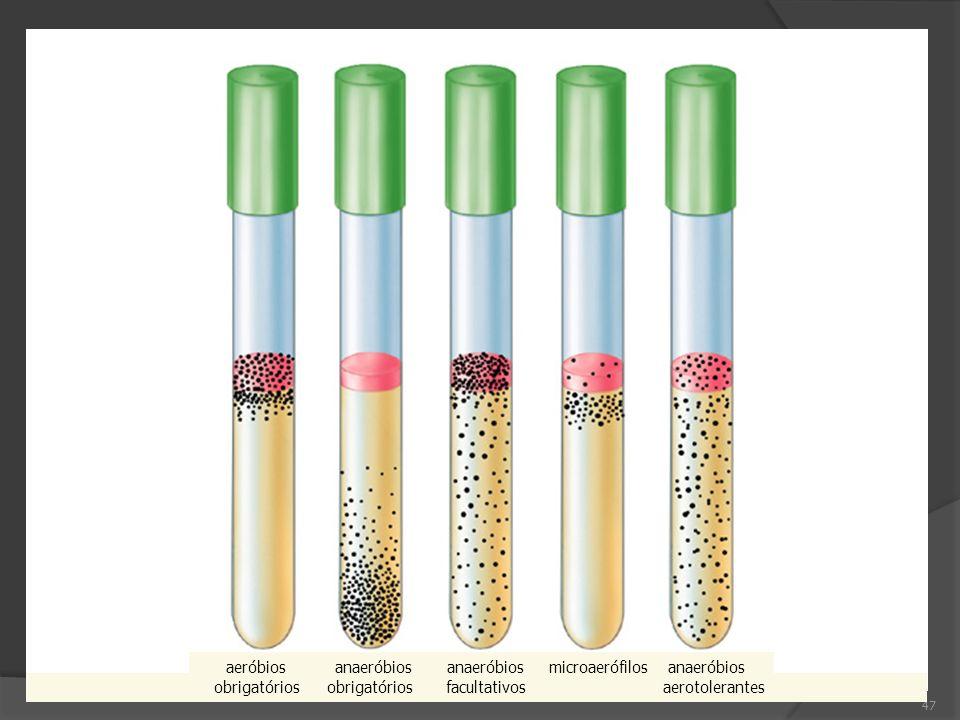 47 aeróbios anaeróbios anaeróbios microaerófilos anaeróbios obrigatórios obrigatórios facultativos aerotolerantes