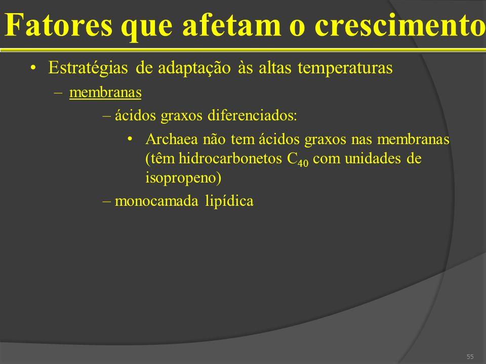 Estratégias de adaptação às altas temperaturas –membranas –ácidos graxos diferenciados: Archaea não tem ácidos graxos nas membranas (têm hidrocarbonet
