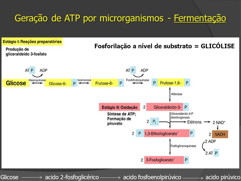 Glicose acido 2-fosfoglicérico acido fosfoenolpirúvico acido pirúvico 9 Fosforilação a nível de substrato = GLICÓLISE Geração de ATP por microrganismo