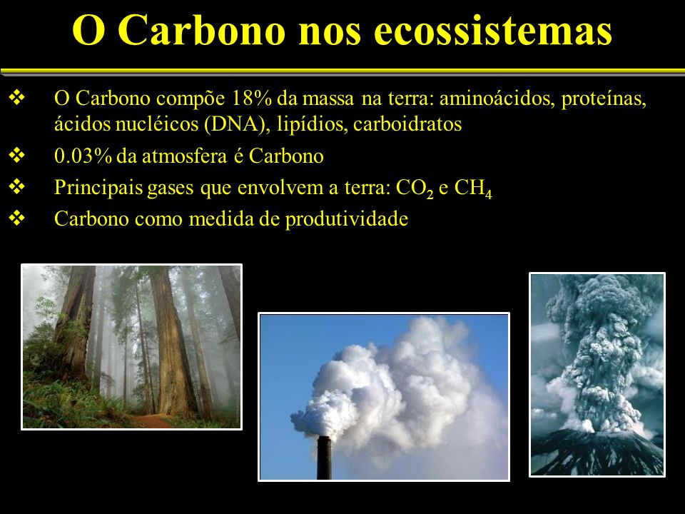 O Carbono nos ecossistemas O Carbono compõe 18% da massa na terra: aminoácidos, proteínas, ácidos nucléicos (DNA), lipídios, carboidratos 0.03% da atm