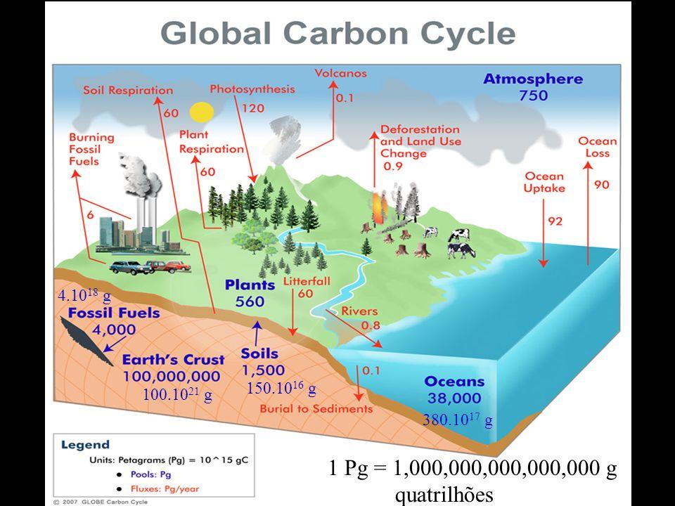 1 Pg = 1,000,000,000,000,000 g quatrilhões 100.10 21 g 150.10 16 g 380.10 17 g 4.10 18 g