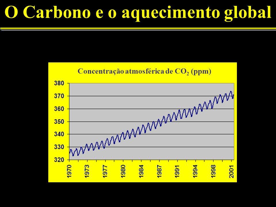 (ppm) Concentração atmosférica de CO 2 (ppm)