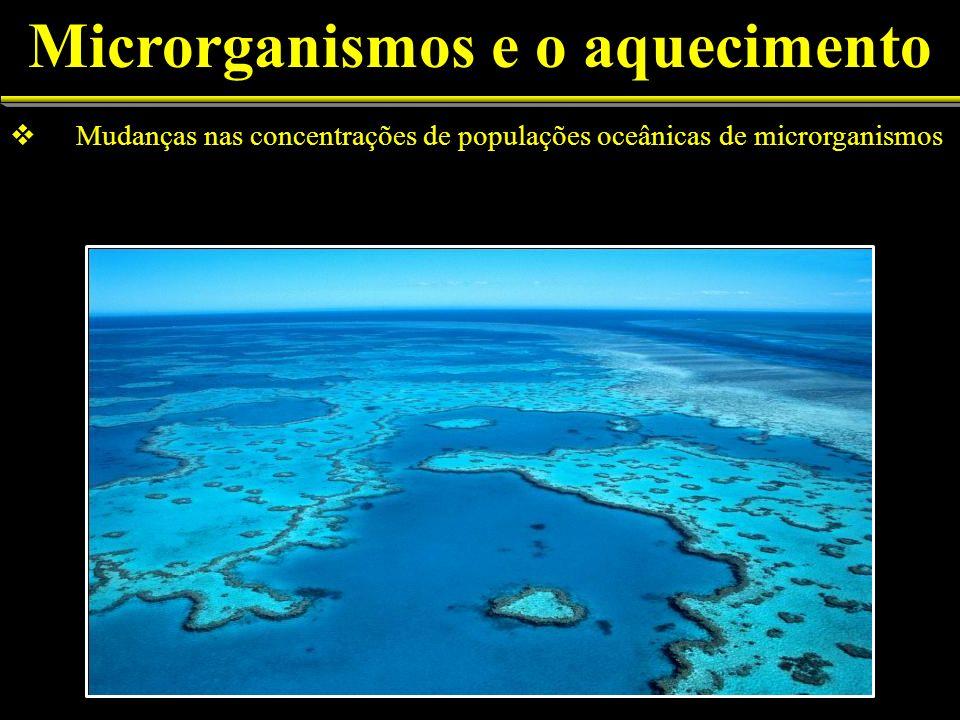 Mudanças nas concentrações de populações oceânicas de microrganismos Microrganismos e o aquecimento