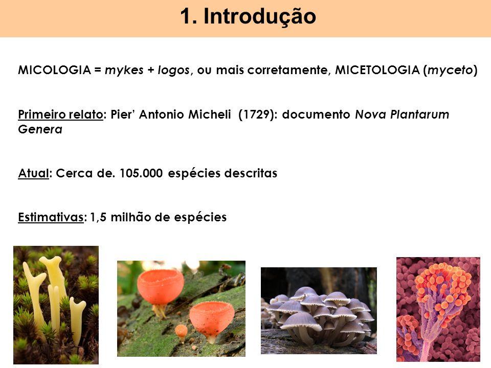 1. Introdução MICOLOGIA = mykes + logos, ou mais corretamente, MICETOLOGIA ( myceto ) Primeiro relato: Pier Antonio Micheli (1729): documento Nova Pla
