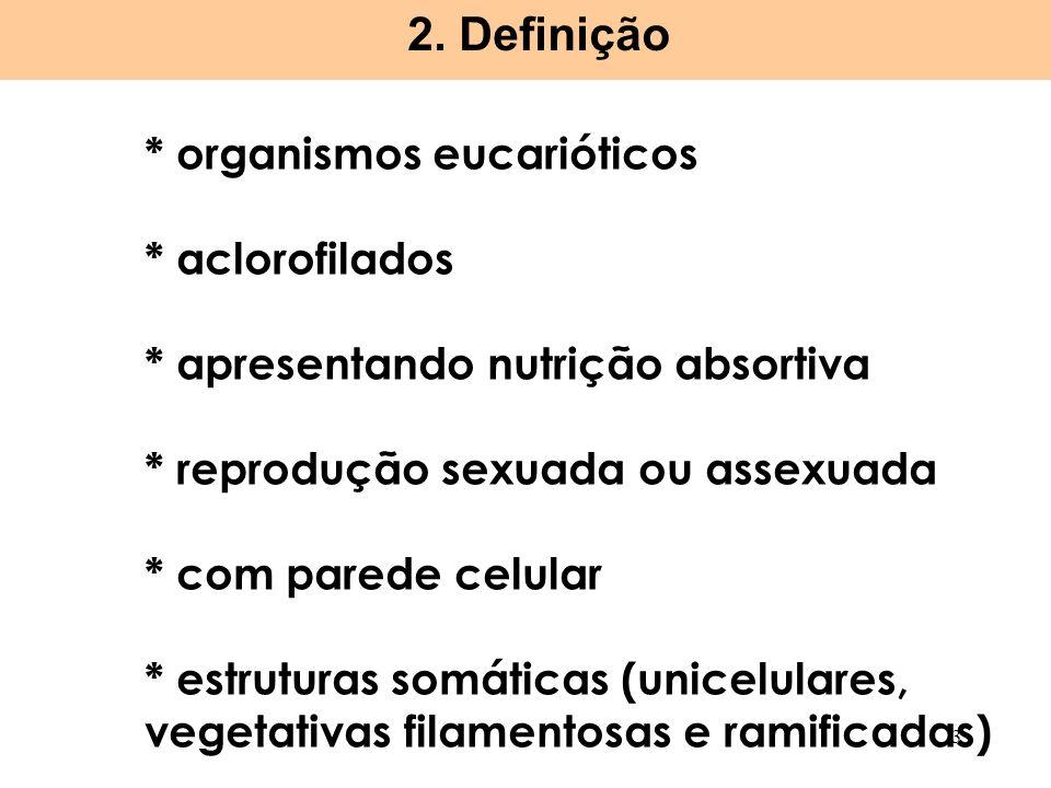 * organismos eucarióticos * aclorofilados * apresentando nutrição absortiva * reprodução sexuada ou assexuada * com parede celular * estruturas somáti
