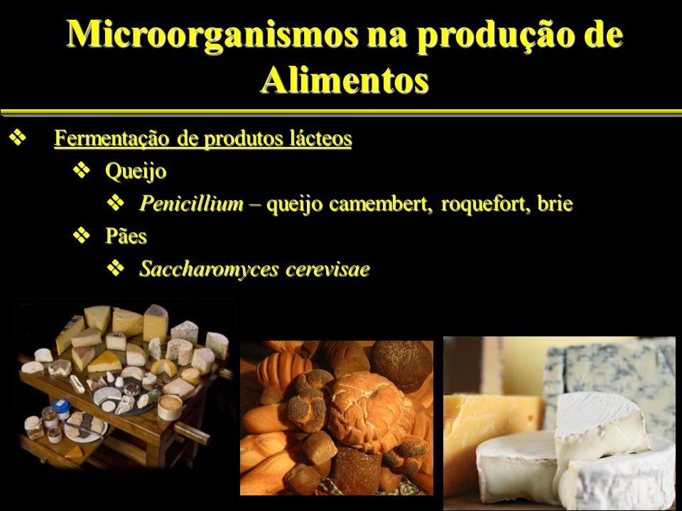 Fermentação de produtos lácteos Fermentação de produtos lácteos Queijo Queijo Penicillium – queijo camembert, roquefort, brie Penicillium – queijo cam