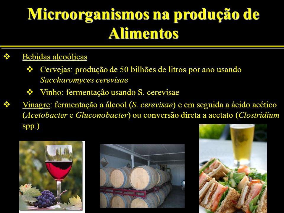 Bebidas alcoólicas Cervejas: produção de 50 bilhões de litros por ano usando Saccharomyces cerevisae Vinho: fermentação usando S. cerevisae Vinagre: f