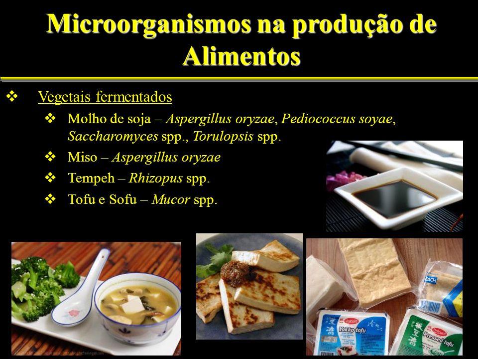 Vegetais fermentados Vegetais fermentados Molho de soja Molho de soja – Aspergillus oryzae, Pediococcus soyae, Saccharomyces spp., Torulopsis spp. Mis