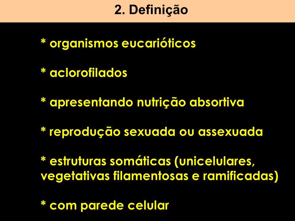 * organismos eucarióticos * aclorofilados * apresentando nutrição absortiva * reprodução sexuada ou assexuada * estruturas somáticas (unicelulares, ve