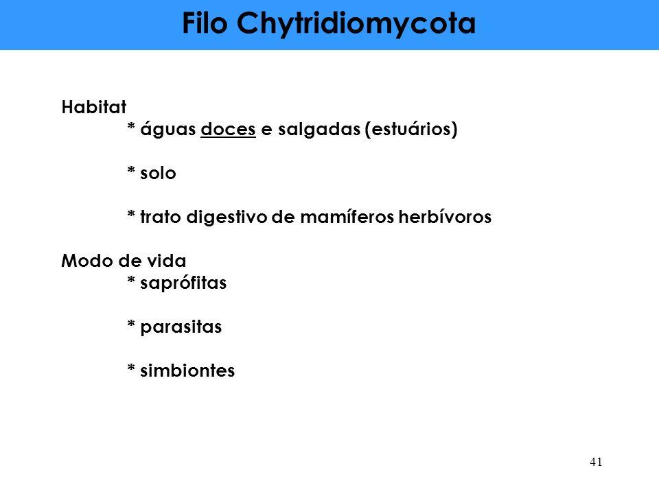 Filo Chytridiomycota Habitat * águas doces e salgadas (estuários) * solo * trato digestivo de mamíferos herbívoros Modo de vida * saprófitas * parasit