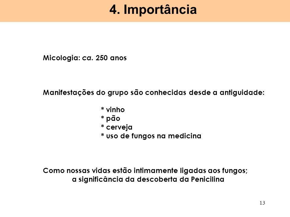 Micologia: ca. 250 anos Manifestações do grupo são conhecidas desde a antiguidade: * vinho * pão * cerveja * uso de fungos na medicina Como nossas vid