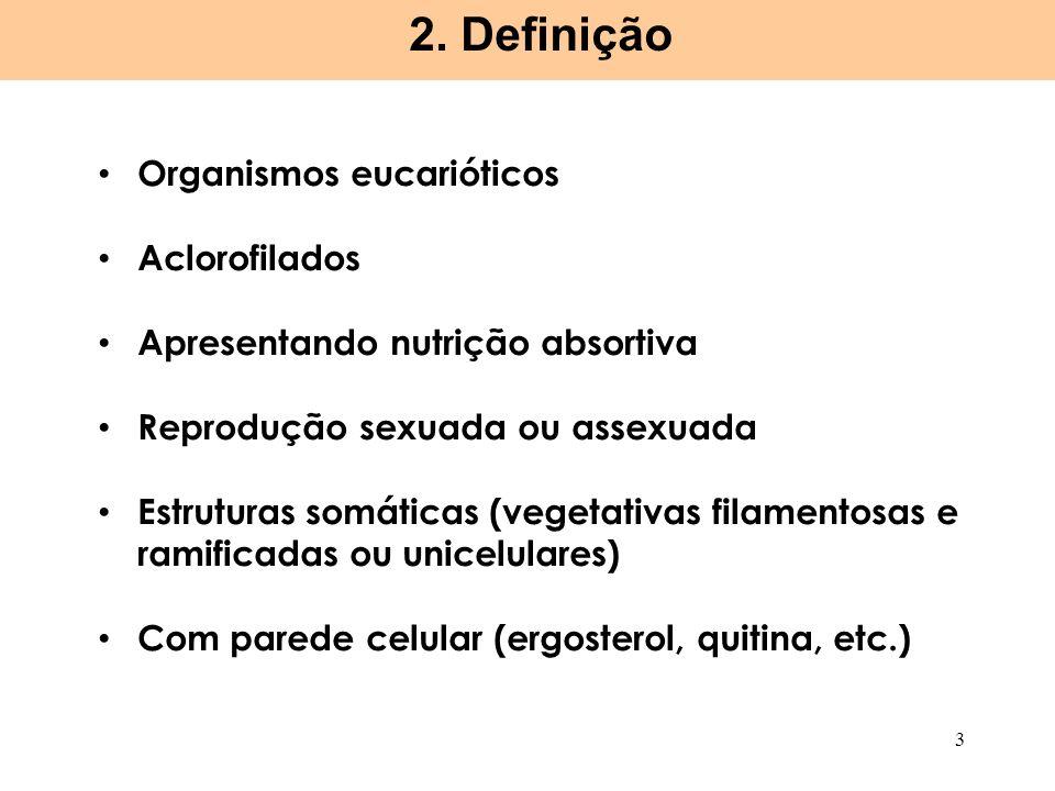 Organismos eucarióticos Aclorofilados Apresentando nutrição absortiva Reprodução sexuada ou assexuada Estruturas somáticas (vegetativas filamentosas e