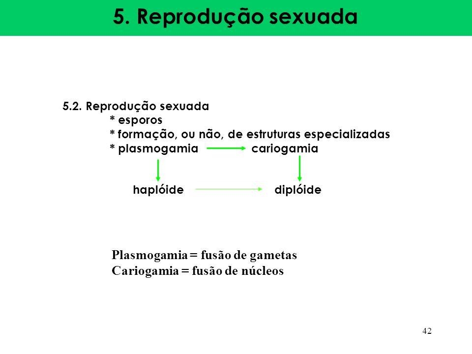 5. Reprodução sexuada 5.2. Reprodução sexuada * esporos * formação, ou não, de estruturas especializadas * plasmogamiacariogamia haplóide diplóide 42