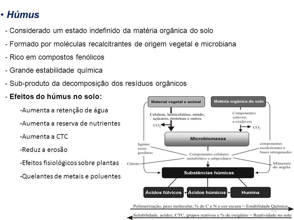 Húmus - Considerado um estado indefinido da matéria orgânica do solo - Formado por moléculas recalcitrantes de origem vegetal e microbiana - Rico em c