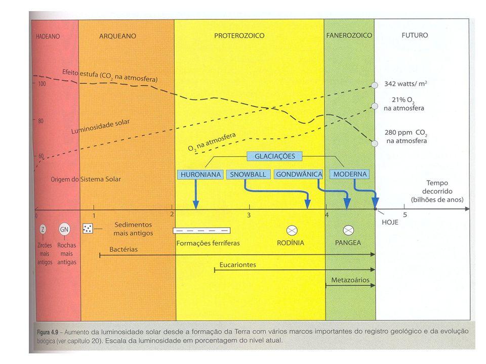 O carbono na atmosfera de hoje O carbono na historia da terra As transformações do conteúdo de CO2 na atmosfera e as interações com os organismos vivo