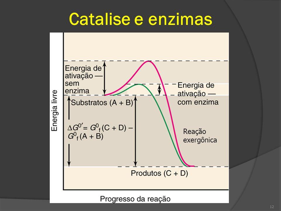 Catalise e enzimas 12 Reação exergônica