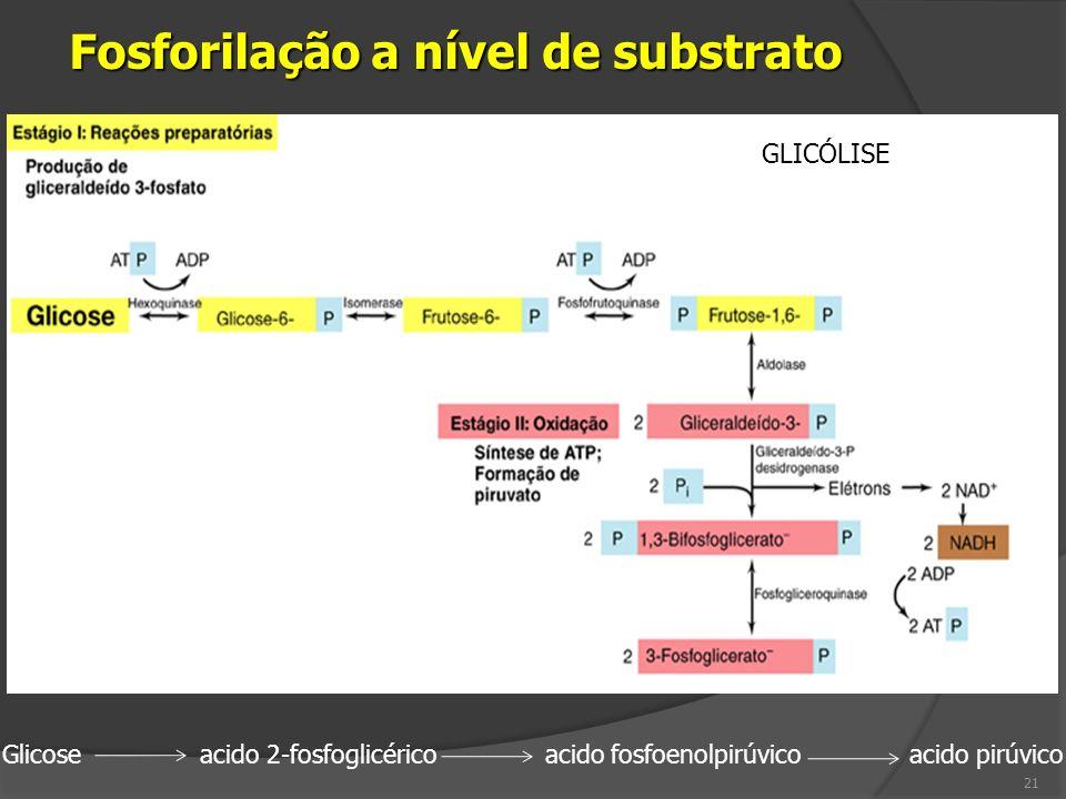 Glicose acido 2-fosfoglicérico acido fosfoenolpirúvico acido pirúvico 21 GLICÓLISE Fosforilação a nível de substrato