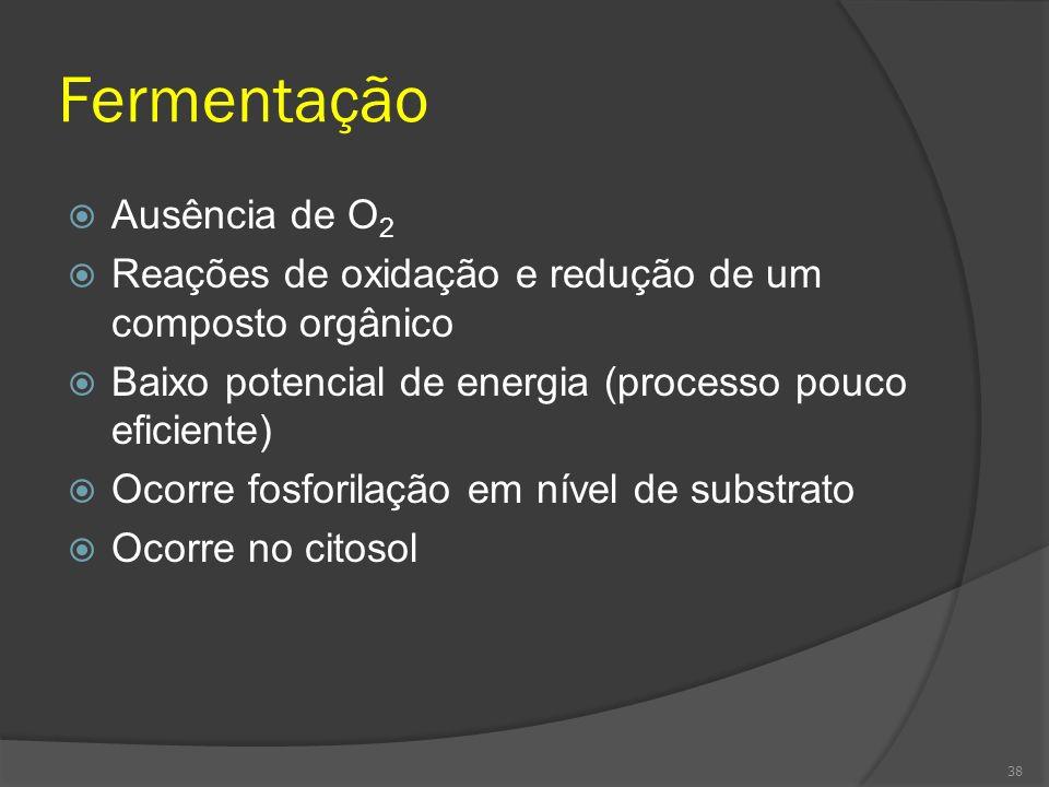 Fermentação Ausência de O 2 Reações de oxidação e redução de um composto orgânico Baixo potencial de energia (processo pouco eficiente) Ocorre fosfori