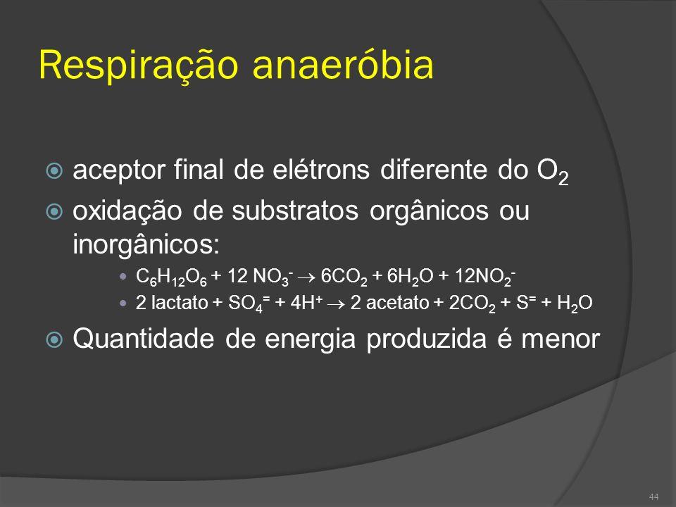 Respiração anaeróbia aceptor final de elétrons diferente do O 2 oxidação de substratos orgânicos ou inorgânicos: C 6 H 12 O 6 + 12 NO 3 - 6CO 2 + 6H 2