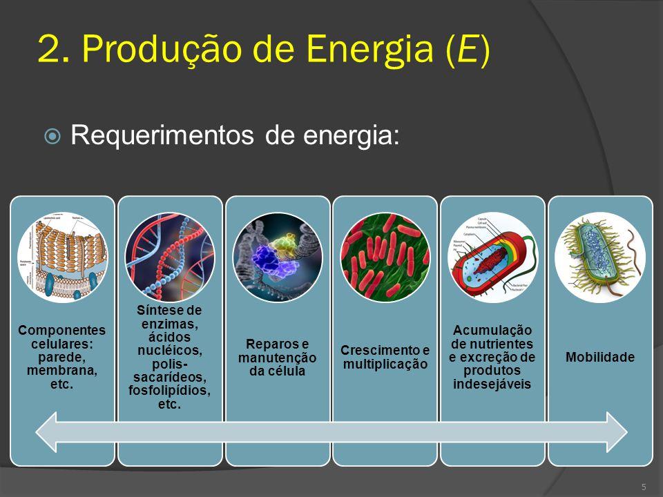 Compostos ricos em energia: armazenamento e transferência de energia (a longo prazo) Procariotos: Glicogenio Poli-β-hidroxibutirato Poli-idroxialcanoatos S (elementar) Eucariotos Poliglicose na forma de amido Lipídeos na forma de gorduras 16
