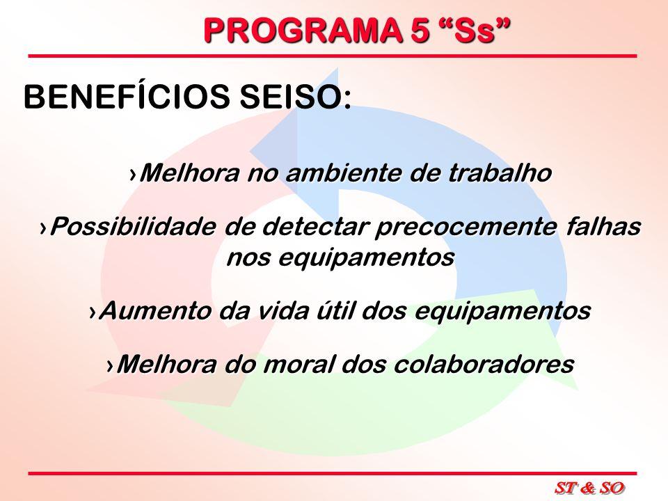 PROGRAMA 5 Ss BENEFÍCIOS SEISO: Melhora no ambiente de trabalhoMelhora no ambiente de trabalho Possibilidade de detectar precocemente falhas nos equip