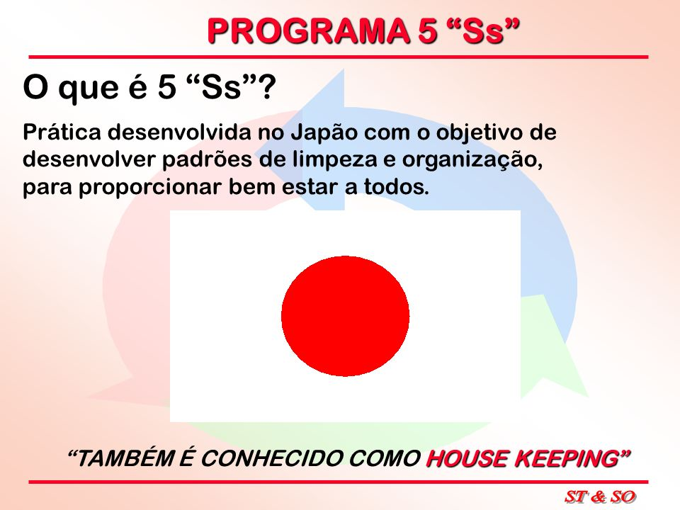 PROGRAMA 5 Ss O que é 5 Ss? Prática desenvolvida no Japão com o objetivo de desenvolver padrões de limpeza e organização, para proporcionar bem estar