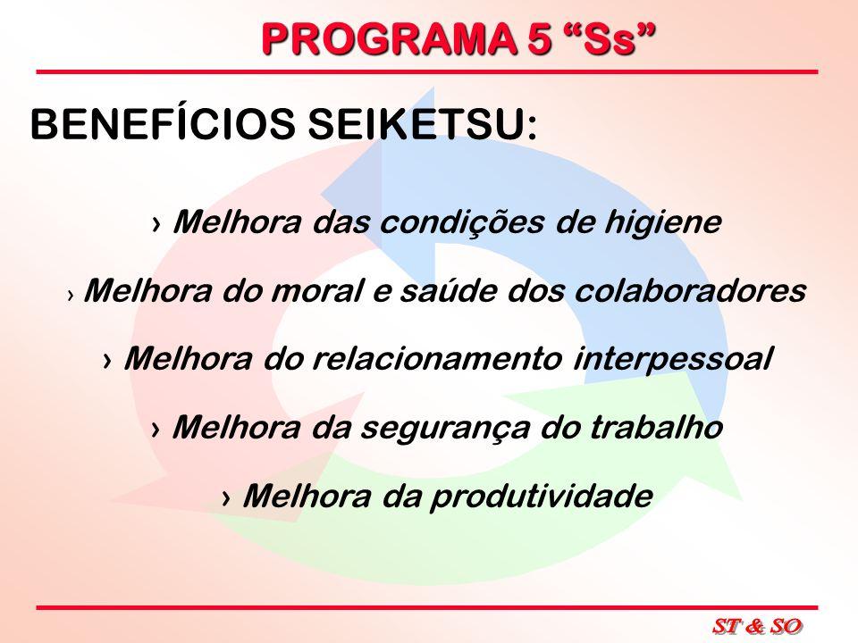 PROGRAMA 5 Ss BENEFÍCIOS SEIKETSU: Melhora das condições de higiene Melhora do moral e saúde dos colaboradores Melhora do relacionamento interpessoal