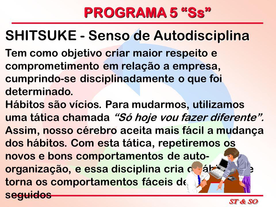 PROGRAMA 5 Ss SHITSUKE - Senso de Autodisciplina Tem como objetivo criar maior respeito e comprometimento em relação a empresa, cumprindo-se disciplin