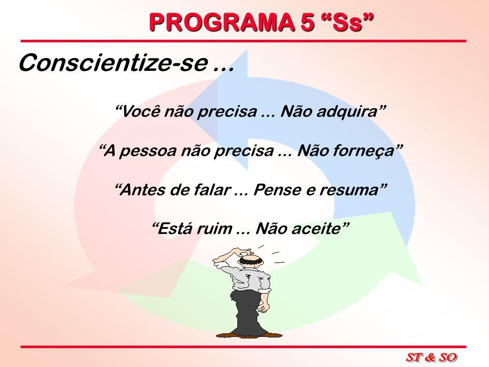 PROGRAMA 5 Ss LEMBRE - SE...