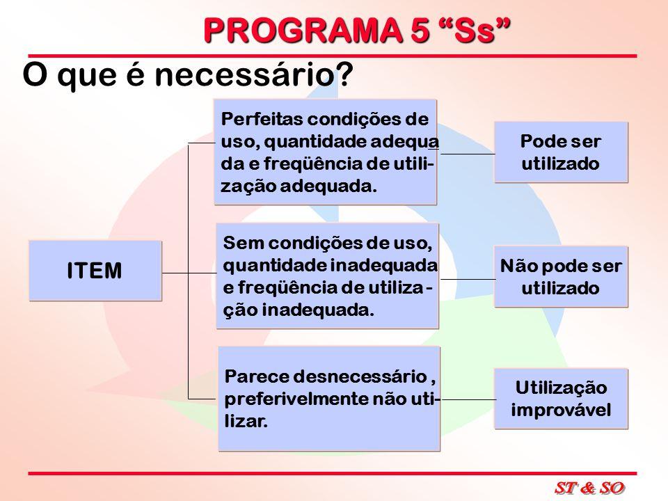 PROGRAMA 5 Ss CRIE NOVOS HÁBITOS.