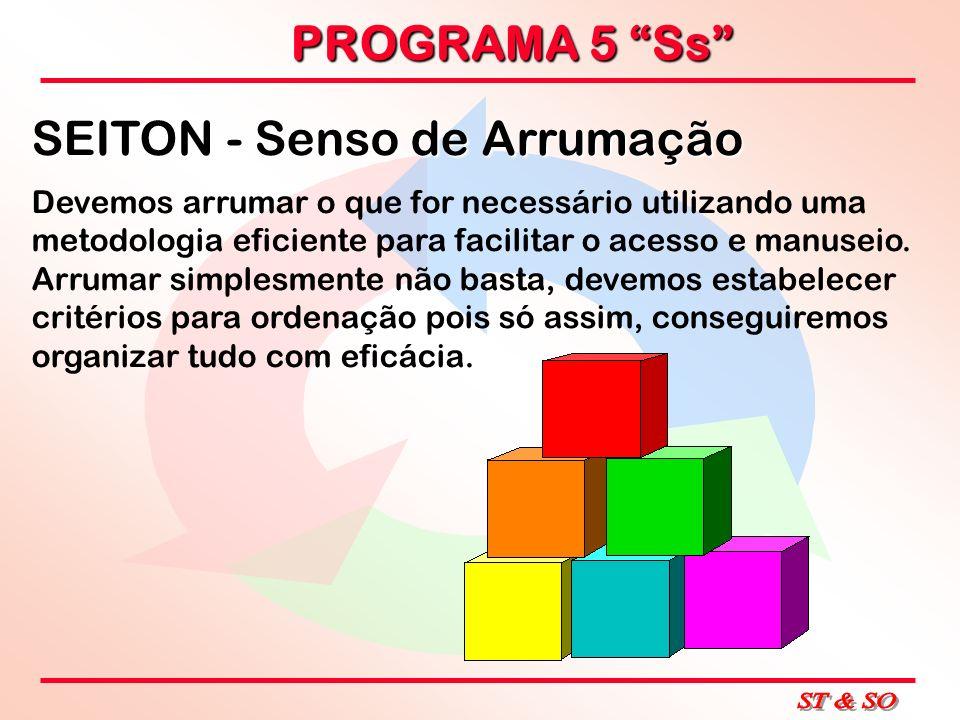 PROGRAMA 5 Ss SEITON - Senso de Arrumação Devemos arrumar o que for necessário utilizando uma metodologia eficiente para facilitar o acesso e manuseio