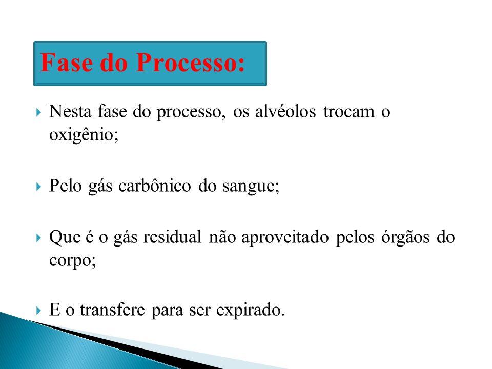 Nesta fase do processo, os alvéolos trocam o oxigênio; Pelo gás carbônico do sangue; Que é o gás residual não aproveitado pelos órgãos do corpo; E o t