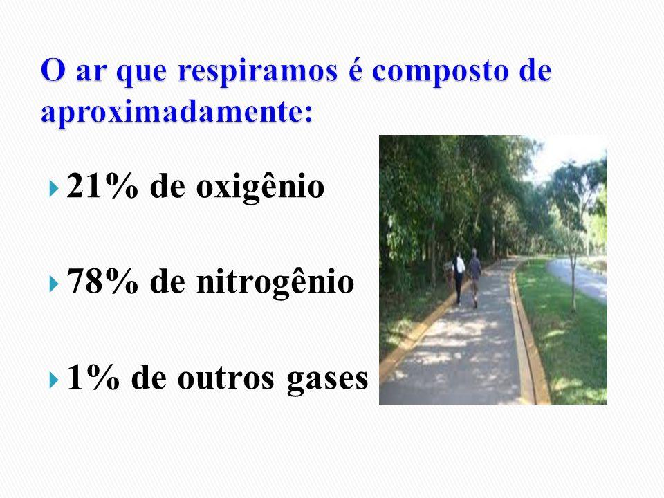 21% de oxigênio 78% de nitrogênio 1% de outros gases