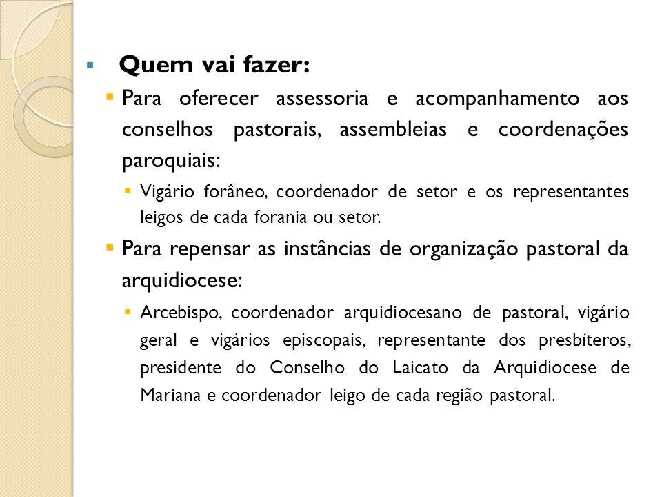 Quem vai fazer: Para oferecer assessoria e acompanhamento aos conselhos pastorais, assembleias e coordenações paroquiais: Vigário forâneo, coordenador
