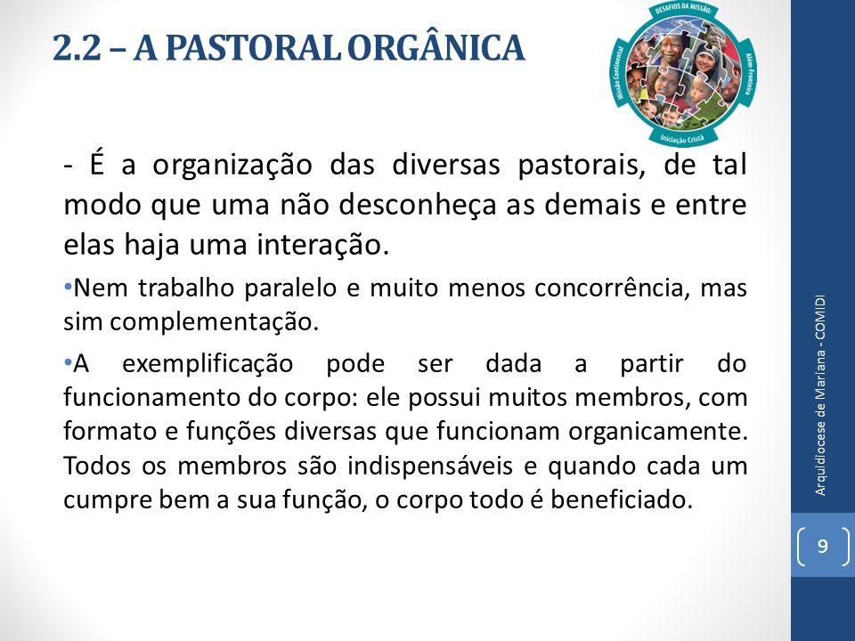 2.2 – A PASTORAL ORGÂNICA - É a organização das diversas pastorais, de tal modo que uma não desconheça as demais e entre elas haja uma interação. Nem