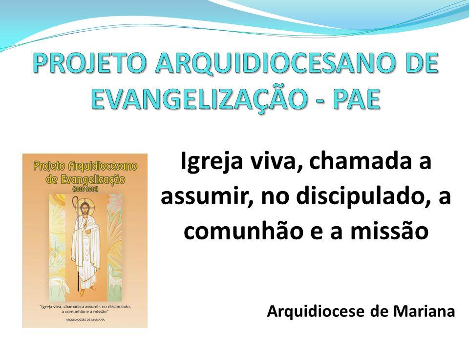 ORIENTAÇÕES GERAIS O Projeto Arquidiocesano de Evangelização centraliza esforços a partir de dois eixos: comunidade e missão: Igreja comunidade de comunidades e em estado permanente de missão.