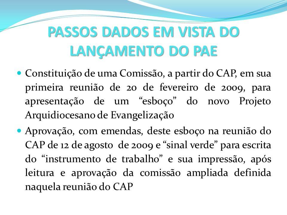 PASSOS DADOS EM VISTA DO LANÇAMENTO DO PAE Constituição de uma Comissão, a partir do CAP, em sua primeira reunião de 20 de fevereiro de 2009, para apr