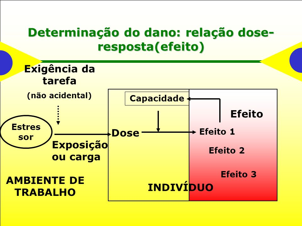 Determinação do dano: relação dose- resposta(efeito) Efeito 1 Efeito 2 Efeito 3 Dose Capacidade Estres sor Exigência da tarefa (não acidental) INDIVÍDUO AMBIENTE DE TRABALHO Exposição ou carga Efeito