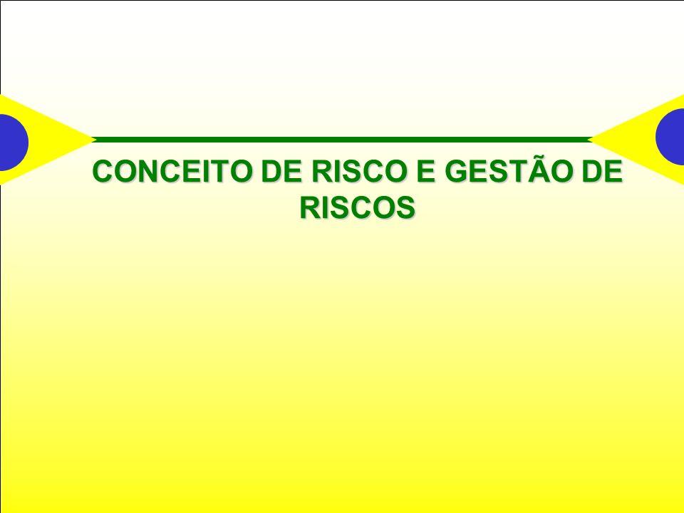 CONCEITO DE RISCO E GESTÃO DE RISCOS