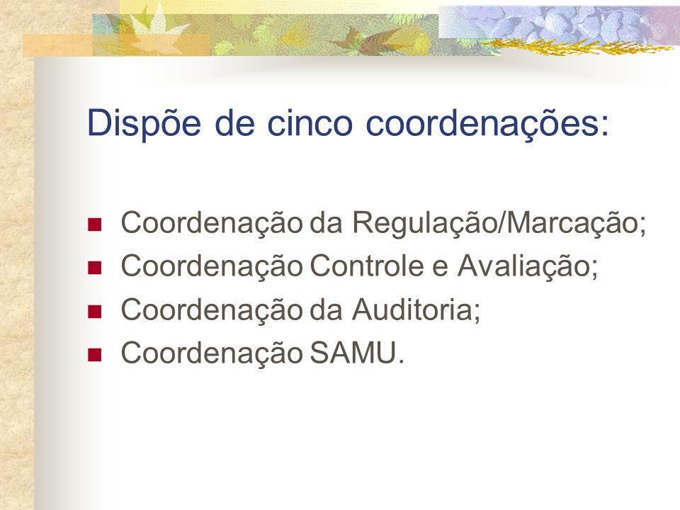 Dispõe de cinco coordenações: Coordenação da Regulação/Marcação; Coordenação Controle e Avaliação; Coordenação da Auditoria; Coordenação SAMU.