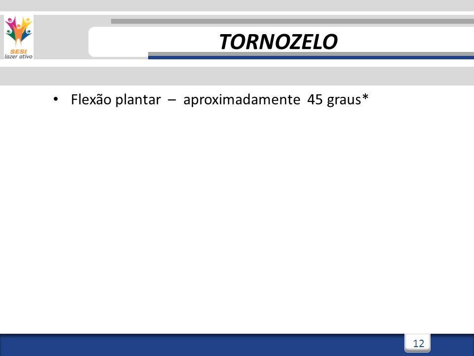 2/3/201412 Flexão plantar – aproximadamente 45 graus* TORNOZELO