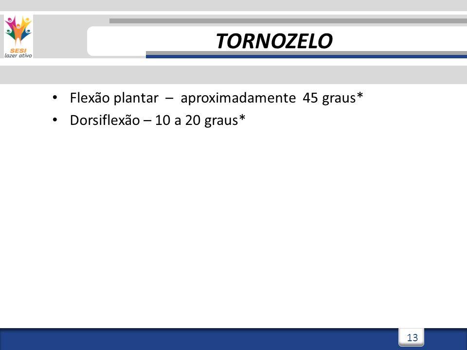 2/3/201413 Flexão plantar – aproximadamente 45 graus* Dorsiflexão – 10 a 20 graus* TORNOZELO