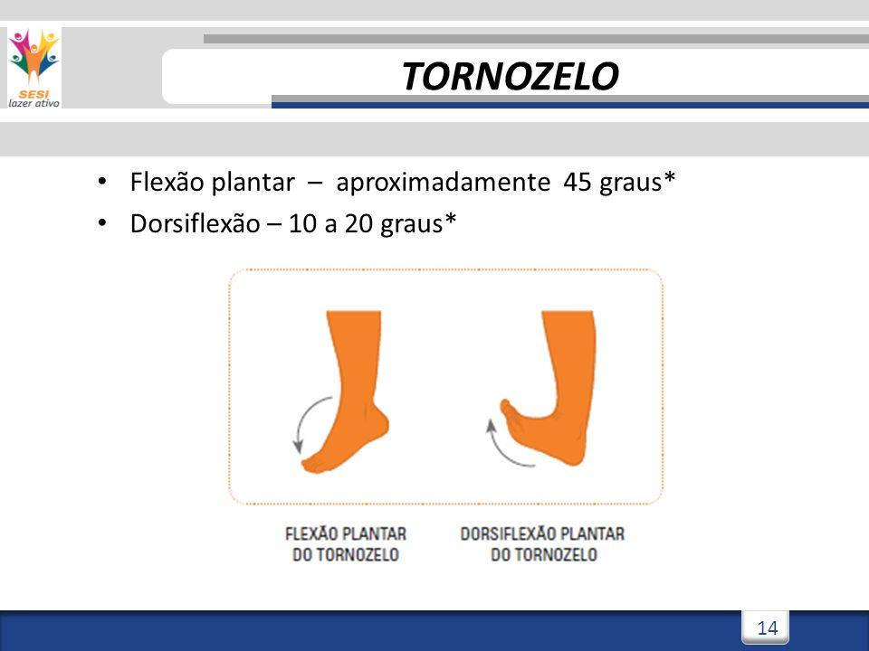 2/3/201414 Flexão plantar – aproximadamente 45 graus* Dorsiflexão – 10 a 20 graus* TORNOZELO