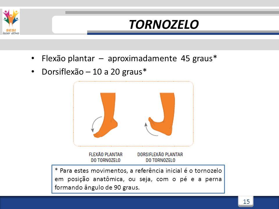 2/3/201415 Flexão plantar – aproximadamente 45 graus* Dorsiflexão – 10 a 20 graus* TORNOZELO * Para estes movimentos, a referência inicial é o tornozelo em posição anatômica, ou seja, com o pé e a perna formando ângulo de 90 graus.